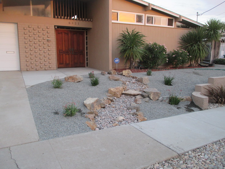 SOFTSCAPES XERISCAPES SPICER 0