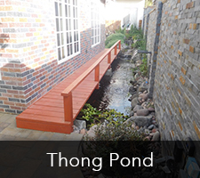 Thong Pond Project