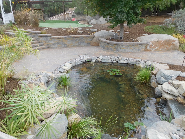 WATER FEATURES POND DESIGNS AGREDANO 1