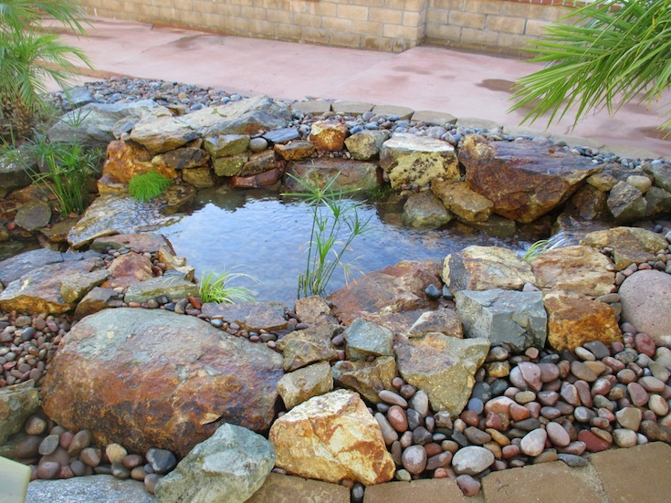 WATER FEATURES POND DESIGNS GONZALES 1