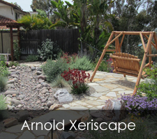 Arnold Xeriscapes Project