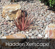 Hadden Xeriscapes Project