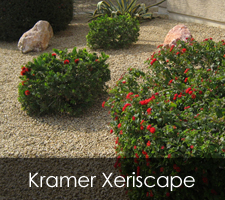 Kramer Xeriscapes Project