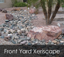 Yard Xeriscapes Project