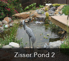 Zisser Pond Project 2