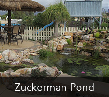 Zuckerman Pond Project